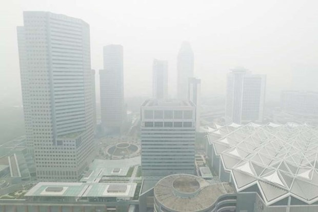 Singapore: International cooperation needed to tackle haze hinh anh 1