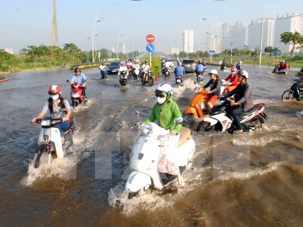 Flood-proof measures sought in Ho Chi Minh City hinh anh 1