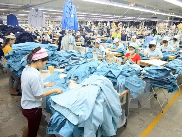 Local bank to spend 2 billion USD to assist apparel firms hinh anh 1
