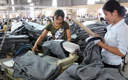 Garment, textile firms face tough, bigger rivals hinh anh 1
