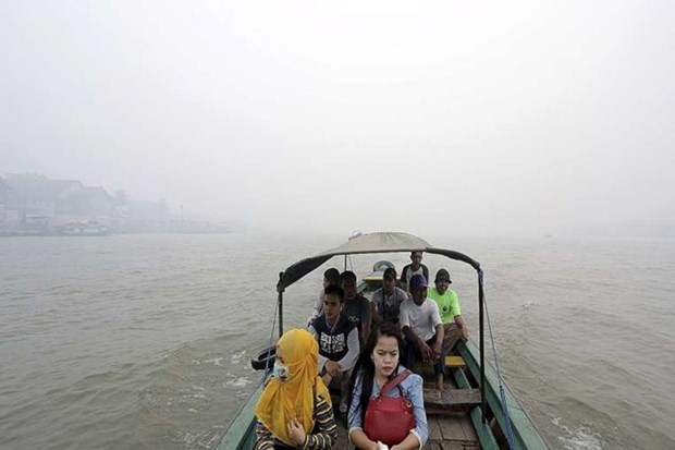 Haze pollution affects airports in Indonesia hinh anh 1