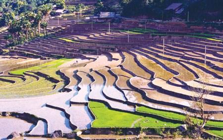 Mong village looks to become new Sapa hinh anh 1