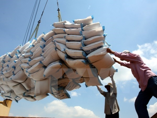 Rice exports see positive signs hinh anh 1
