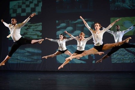 Battery Dance Company to perform, hold workshops hinh anh 1