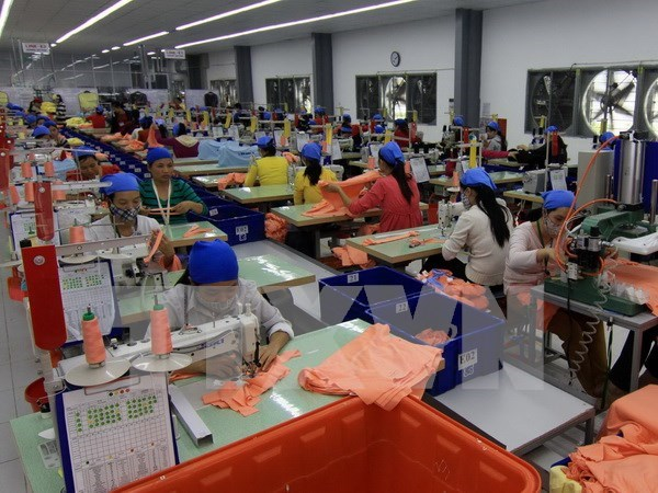 TPP helps small, medium businesses: experts hinh anh 1