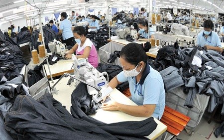 TPP to bring positive economic growth for Vietnam: agencies hinh anh 1