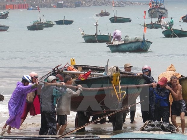 Natural disasters could bite into Vietnam wealth hinh anh 1