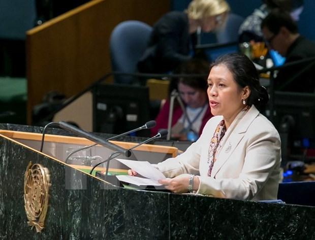 ASEAN praises UN role in development hinh anh 1