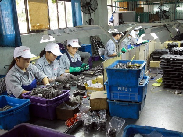 Indian businesses eye investment opportunities in Nam Dinh hinh anh 1