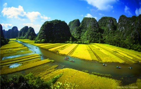 Vietnam's landscapes to appear on UK TV hinh anh 1