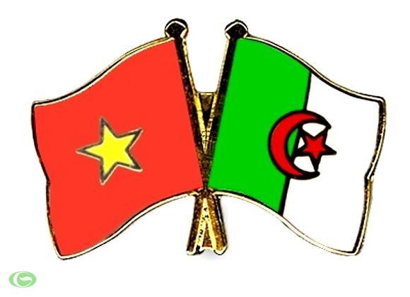 Vietnam seeks closer trade links with Algeria hinh anh 1