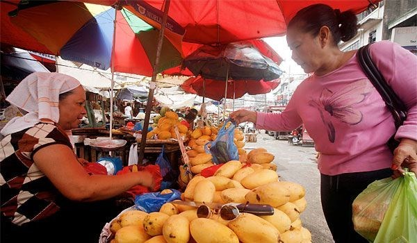 Philippines' export turnover down in first half of 2015 hinh anh 1