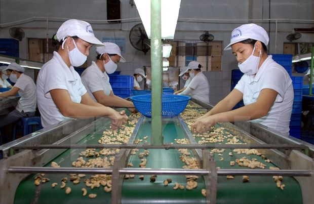 Businesses anticipate opportunities to increase exports to RoK hinh anh 1