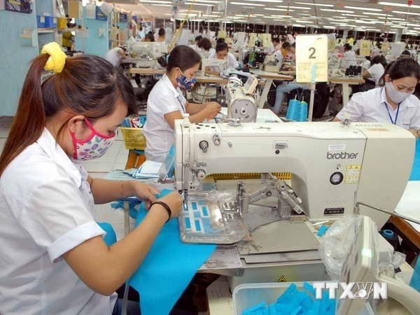 SMEs must seek place in global supply networks hinh anh 1