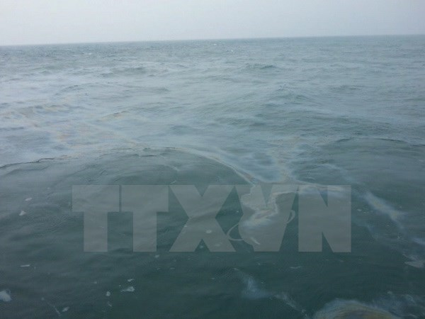 Oil spill response training course held in Quang Nam hinh anh 1