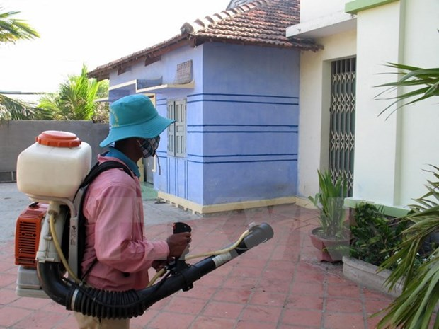 Hanoi: Drastic measures needed to end dengue fever hinh anh 1
