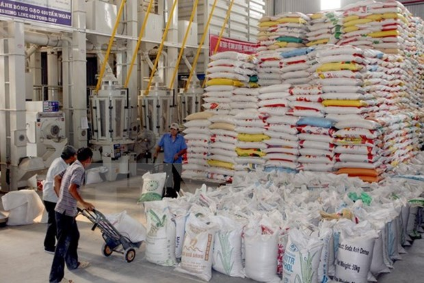 Vietnamese rice needs quality, branding improvements: experts hinh anh 1