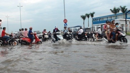 Home reservoirs may curb flooding in HCM hinh anh 1