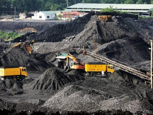Coal consumption for power production surges hinh anh 1