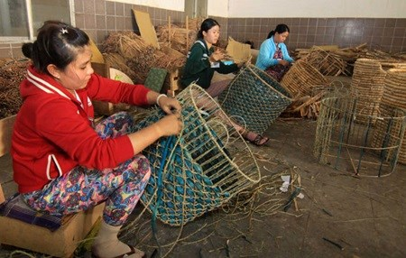 Vietnam needs better quality forest products hinh anh 1