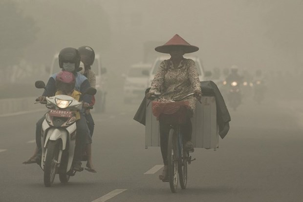 Haze causes huge losses to Indonesia's aviation sector hinh anh 1