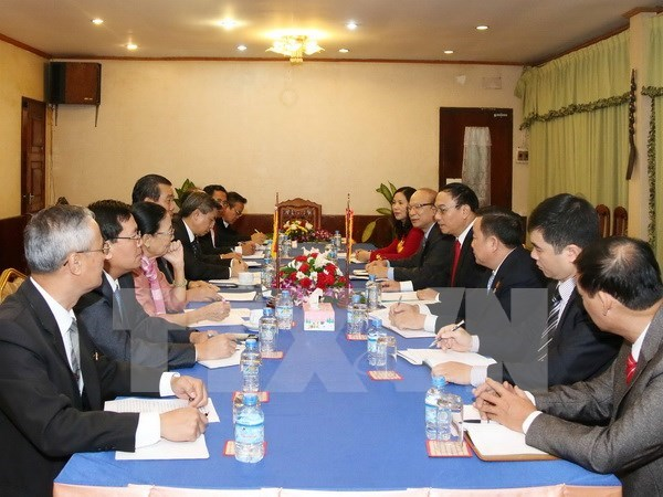 Vietnam-Laos border cooperation bears fruit hinh anh 1