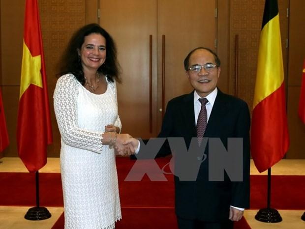 Vietnam, Belgium seek closer legislative ties hinh anh 1