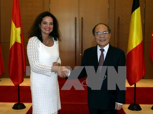 Vietnam, Belgium boost co-operation through parliamentary diplomacy hinh anh 1