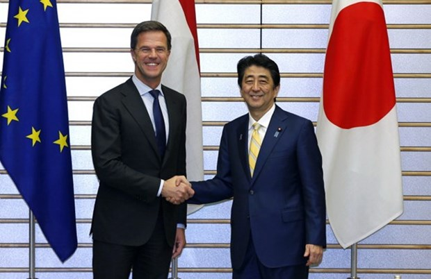 Japan, Netherlands share concern over East Sea tensions hinh anh 1
