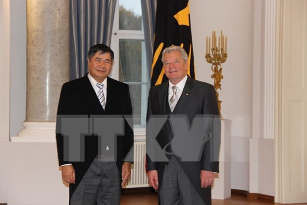Large potential for Vietnam-Germany relations: Ambassador hinh anh 1