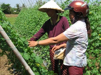 ASEAN can boost agri-industry through empowerment of women: FAO hinh anh 1