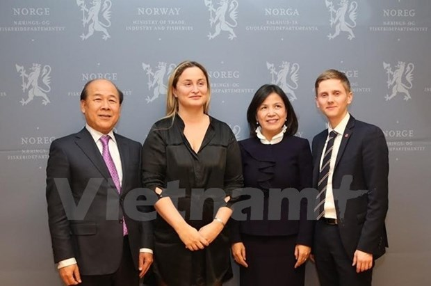 Vietnam, Norway strengthen transport cooperation hinh anh 1