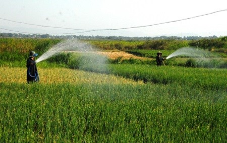 Power, agriculture sectors brace for water shortages hinh anh 1