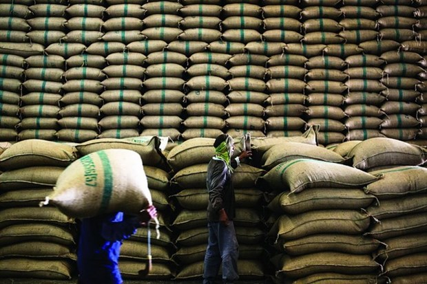 Thailand loses top rice exporting status to India hinh anh 1