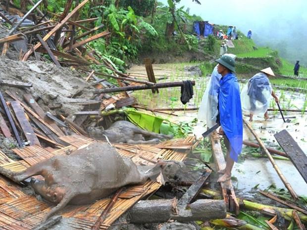 Workshop promotes disaster management in Mekong Delta hinh anh 1