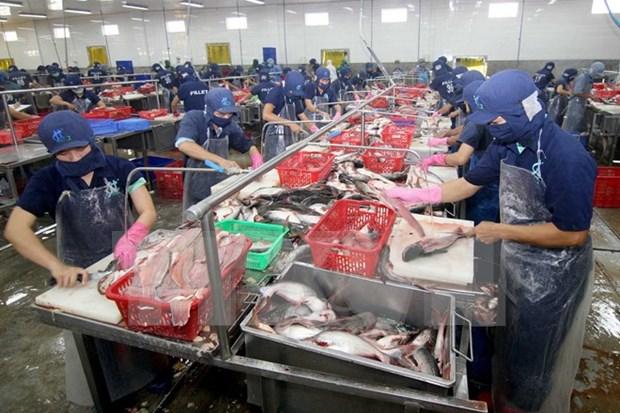 Vietnam's aquatic exports up 1.7 percent in Q1 hinh anh 1