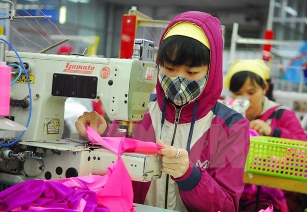 Binh Duong: More FDI poured into garment sector hinh anh 1