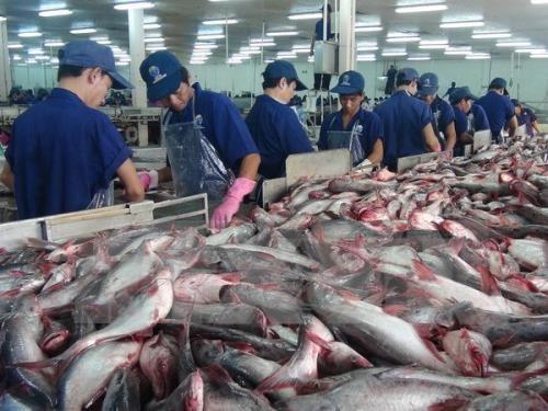 Aquatic export hits nearly 2 billion USD hinh anh 1