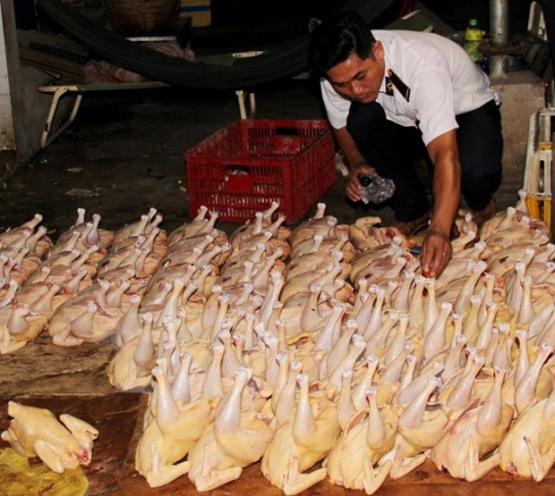 Due attention needed for food safety management hinh anh 1