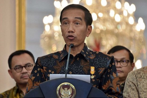 ASEAN, Russia set stronger cooperation hinh anh 1
