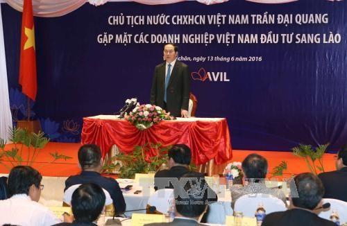 President Tran Dai Quang busy in Laos hinh anh 1