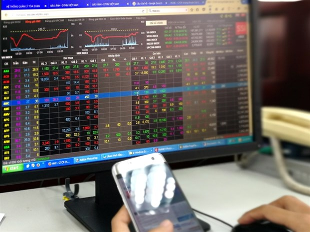 VN Index rises after drop on June 24 hinh anh 1