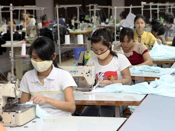 Minimum wage should be hourly: official hinh anh 1