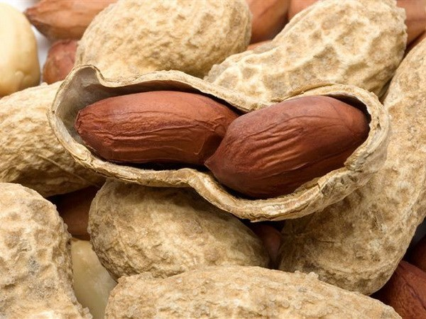 Vietnam suspends peanut imports from Senegal hinh anh 1