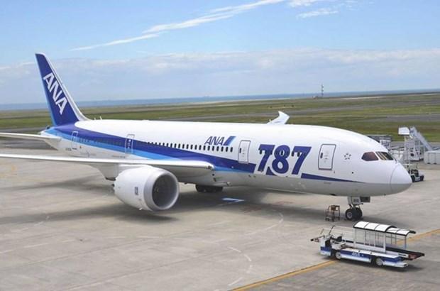 ANA flights between Narita and HCM City to double hinh anh 1