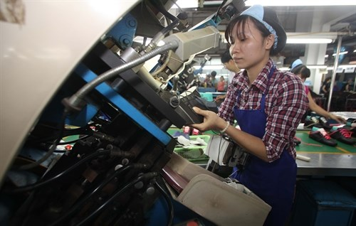 Indian leather industry eyes huge Vietnam's market hinh anh 1