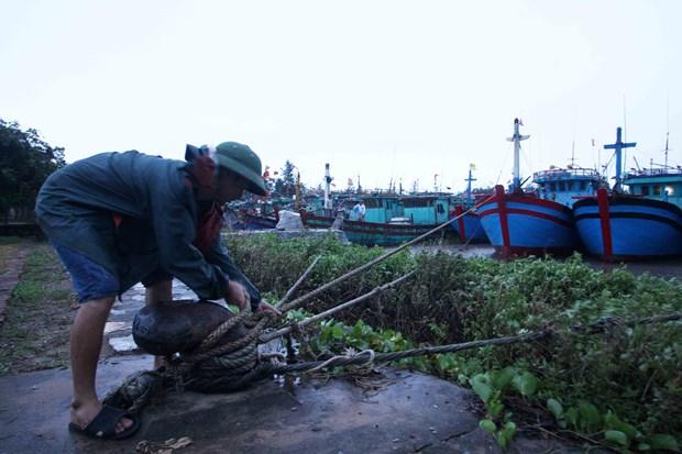 Northern Vietnam prepares for storm Mirinae hinh anh 1