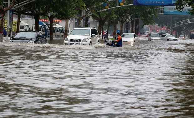 Localities, ministries urged to gear up for typhoon Nida hinh anh 1