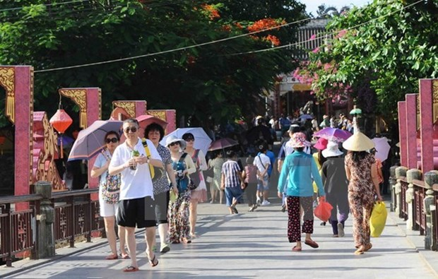 Vietnam sets up tourism training association hinh anh 1