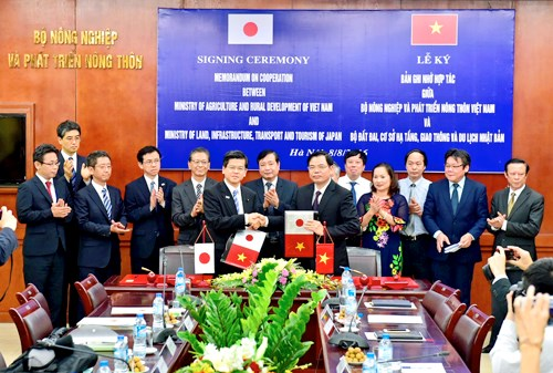 Vietnam, Japan collaborate in irrigation management hinh anh 1